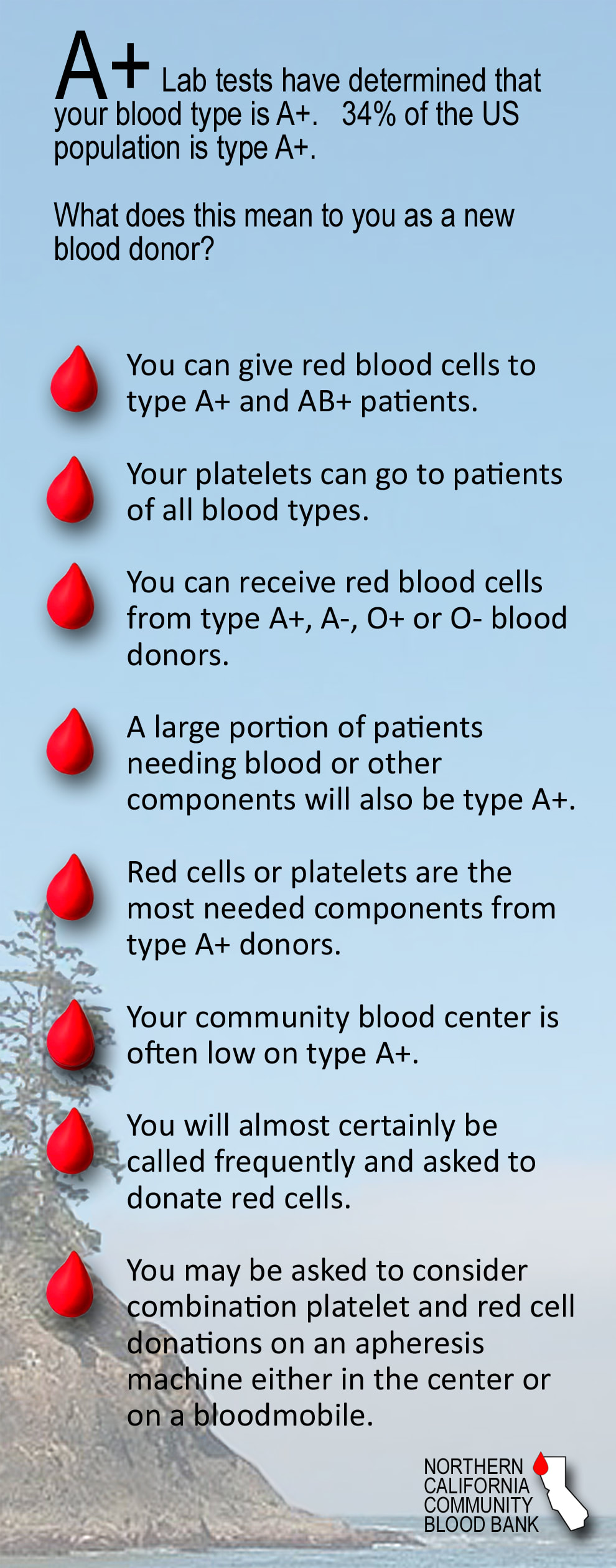 Human Blood Types - NORTHERN CALIFORNIA COMMUNITY BLOOD BANK
